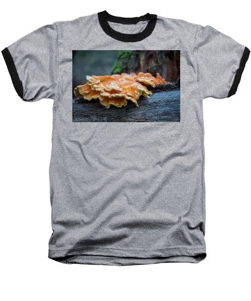 Flowing Fungus Baseball T-Shirt