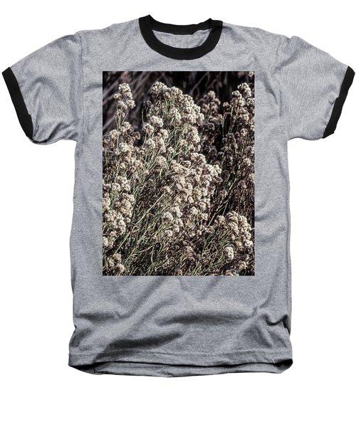 Fluff And Seeds Baseball T-Shirt