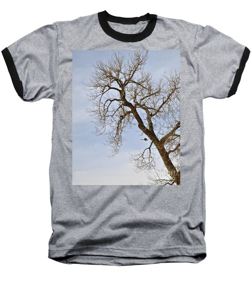 Flying Goose By Great Tree Baseball T-Shirt