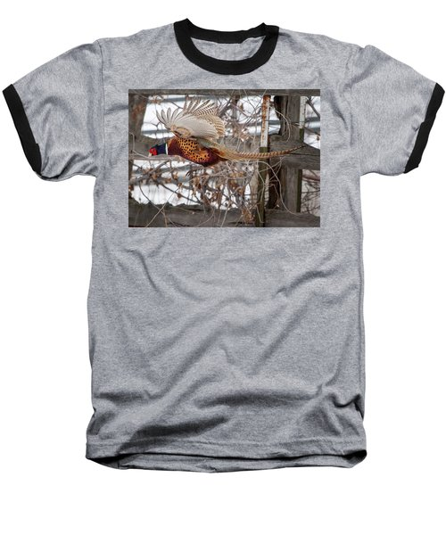 Baseball T-Shirt featuring the photograph Flying Pheasant by Wesley Aston