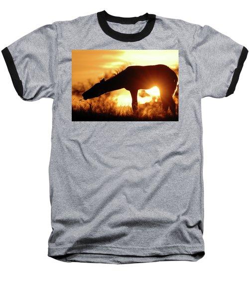 Foal Silhouette Baseball T-Shirt