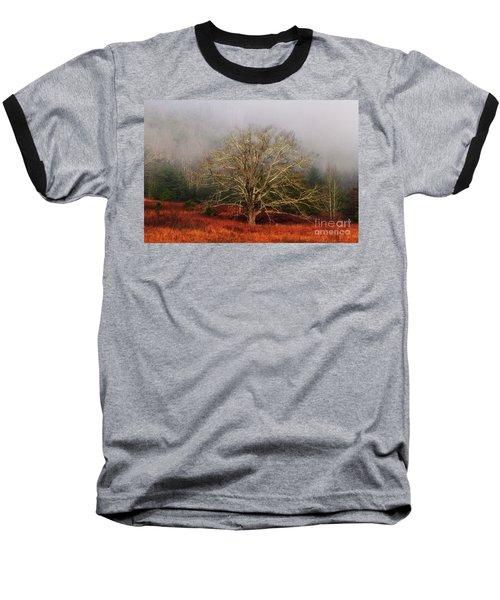 Fog Tree Baseball T-Shirt