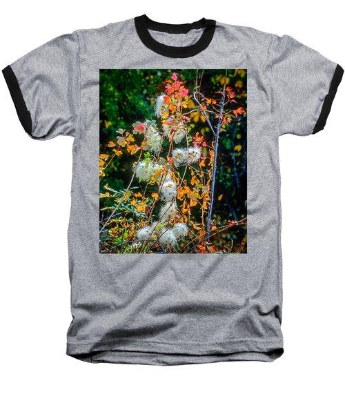 Foliage Twisted Colored Leaves Baseball T-Shirt by John Brink