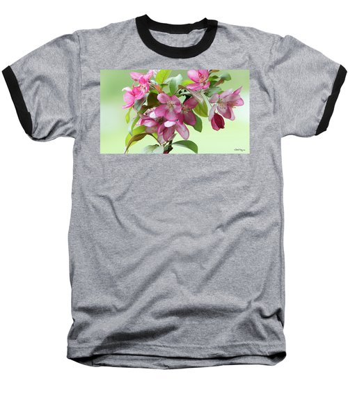 Baseball T-Shirt featuring the photograph For The Beauty Of The Earth by Skip Tribby
