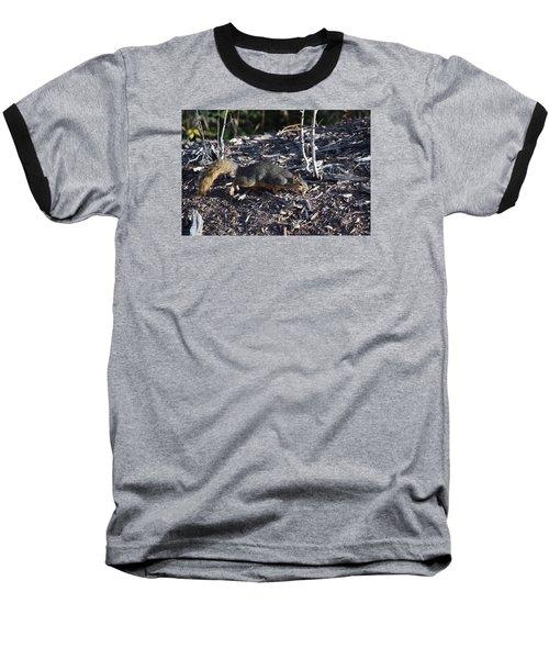 Squirrel Pprh Woodland Park Co Baseball T-Shirt