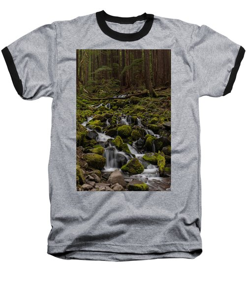 Forest Cathederal Baseball T-Shirt by Mike Reid