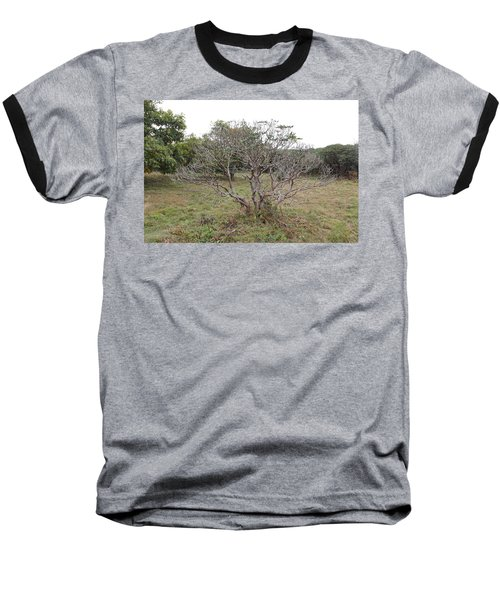 Forest Character Tree Baseball T-Shirt