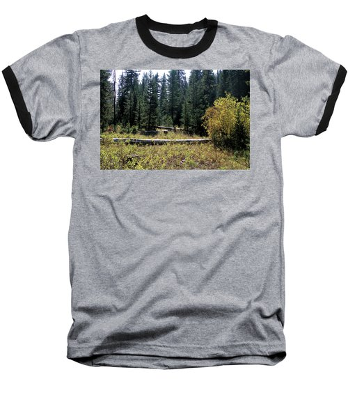 Forest Clearing Baseball T-Shirt