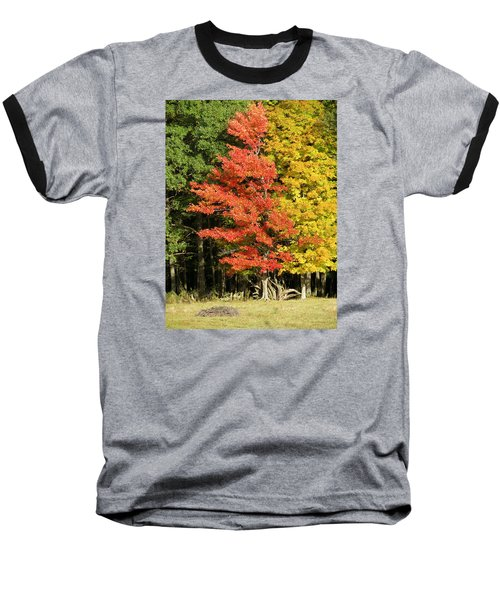 Forest Door Baseball T-Shirt