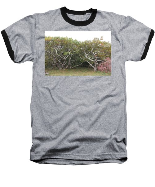 Forest Entry Baseball T-Shirt