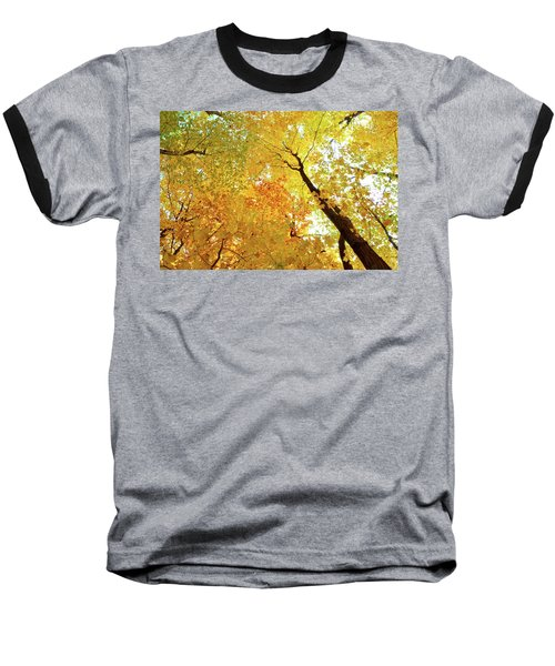 Forest Fall Yellow  Baseball T-Shirt by Lyle Crump