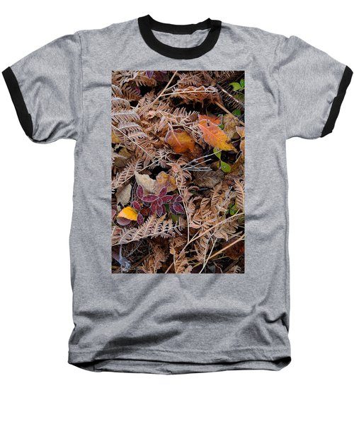 Forest Ferns Baseball T-Shirt