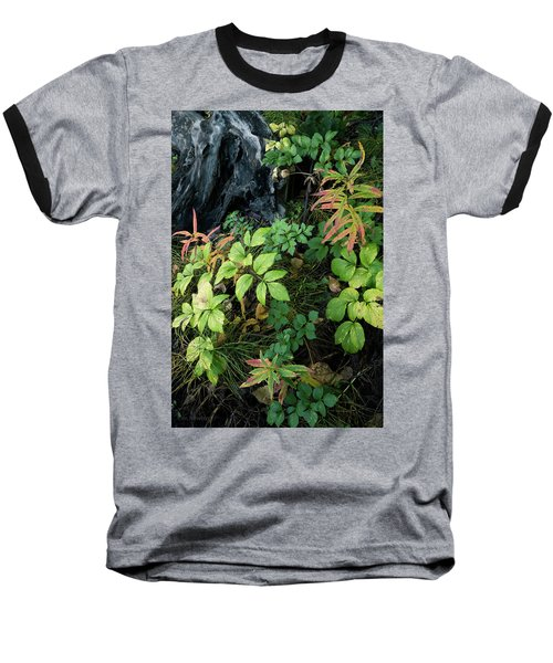 Forest Floor In Early Autumn Baseball T-Shirt