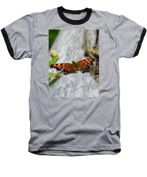 Forest Fritillary Baseball T-Shirt by KD Johnson