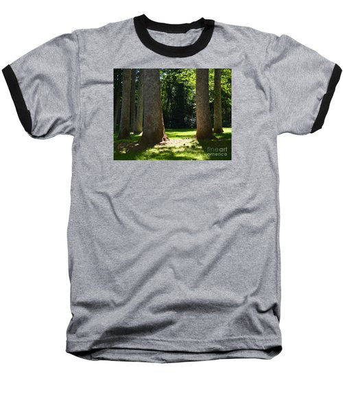 Forest Glen Baseball T-Shirt by Lew Davis