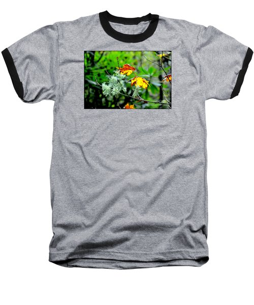 Forest Little Wonders Baseball T-Shirt by Tanya Searcy