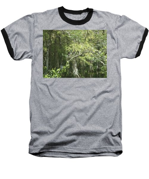 Forest On A Swamp Baseball T-Shirt