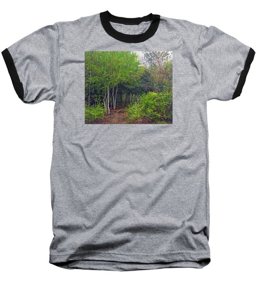 Forest Path Leading Into The Forest Baseball T-Shirt