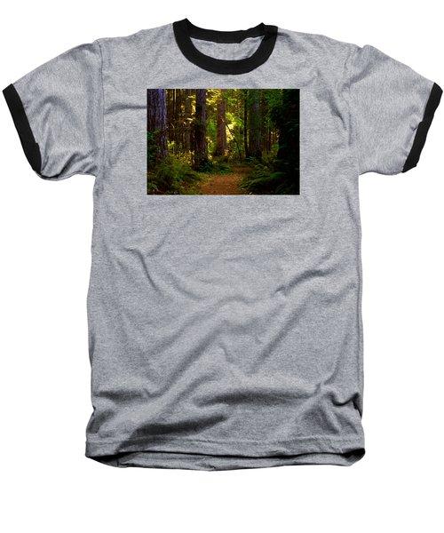 Forest Path Baseball T-Shirt