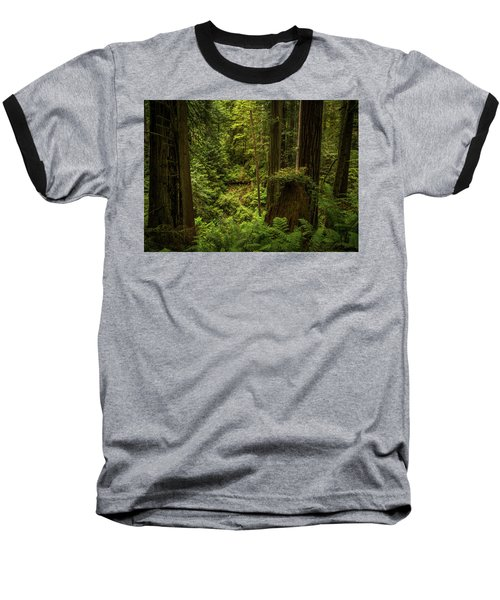 Forest Primeval Baseball T-Shirt
