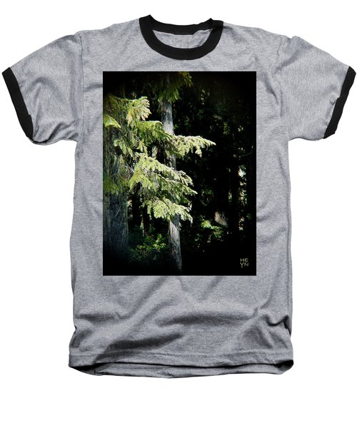 Forest Sunlight - 1 Baseball T-Shirt