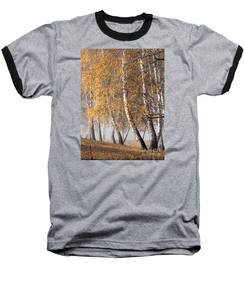 Forest With Birches In The Autumn Baseball T-Shirt by Odon Czintos