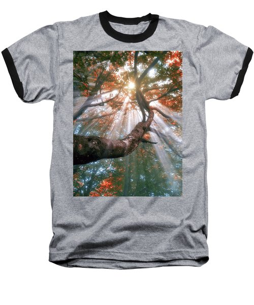 Forest With Fog And Sun Rays Baseball T-Shirt