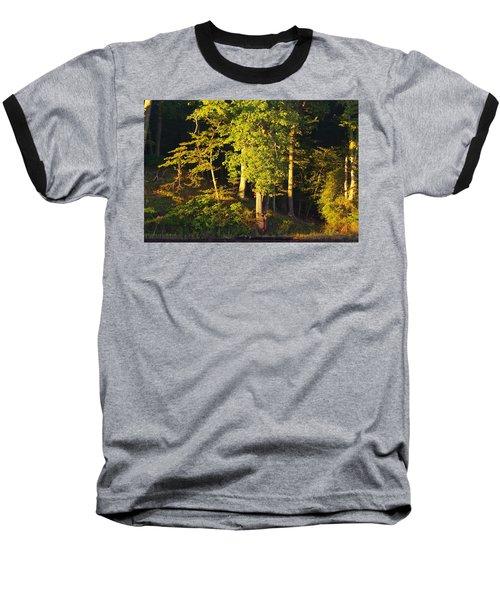 Forests Edge Baseball T-Shirt