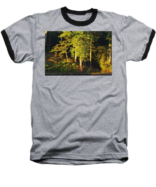 Forests Edge Baseball T-Shirt
