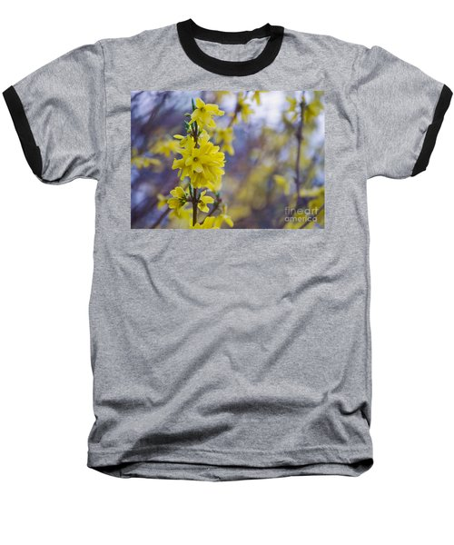 Baseball T-Shirt featuring the photograph Forsythia by Rima Biswas