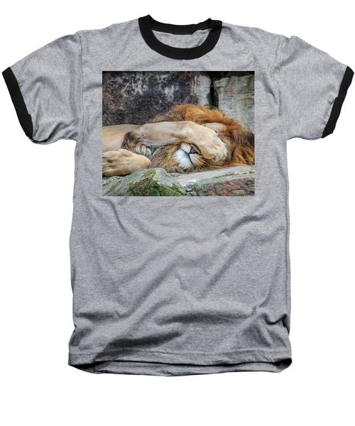 Fort Worth Zoo Sleepy Lion Baseball T-Shirt