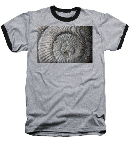 Fossil Spiral  Baseball T-Shirt by LeeAnn McLaneGoetz McLaneGoetzStudioLLCcom