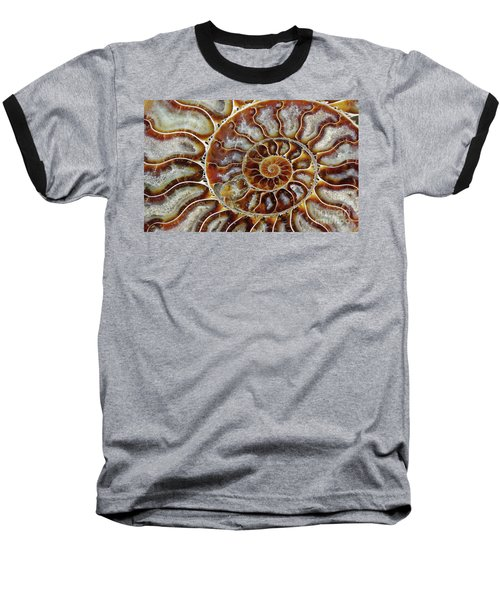 Fossilized Ammonite Spiral Baseball T-Shirt