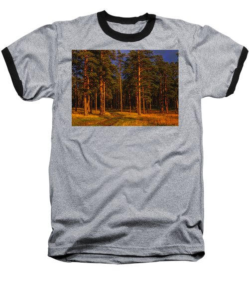 Baseball T-Shirt featuring the photograph Forest After Rain Storm by Vladimir Kholostykh