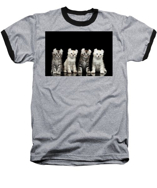 Four American Curl Kittens With Twisted Ears Isolated Black Background Baseball T-Shirt