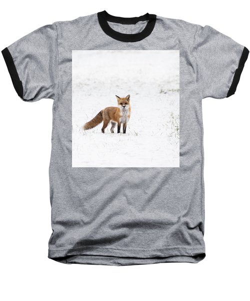 Fox 1 Baseball T-Shirt