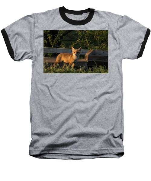 Baseball T-Shirt featuring the photograph Fox 2 by Jay Stockhaus