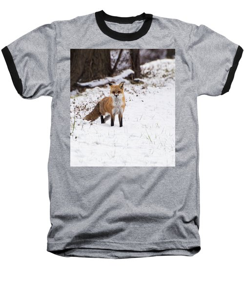 Fox 4 Baseball T-Shirt