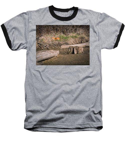 Fox Asleep Baseball T-Shirt by Edward Peterson