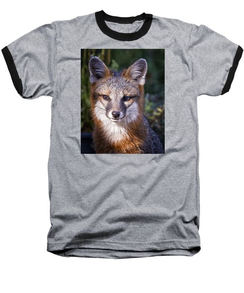 Fox Gaze Baseball T-Shirt
