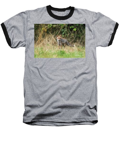 Fox In The Woods Baseball T-Shirt