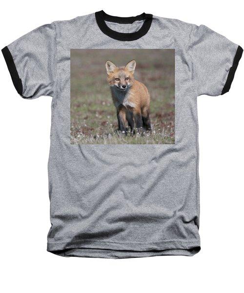 Baseball T-Shirt featuring the photograph Fox Kit by Elvira Butler