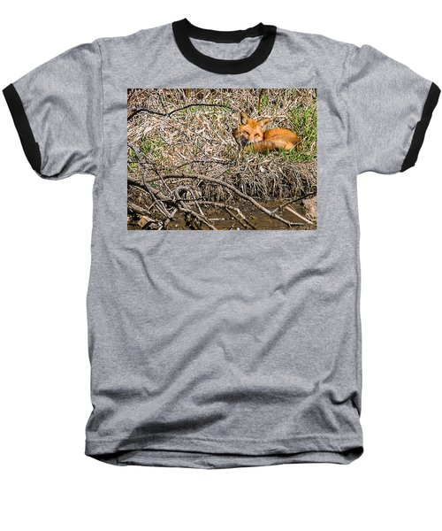 Baseball T-Shirt featuring the photograph Fox Napping by Edward Peterson