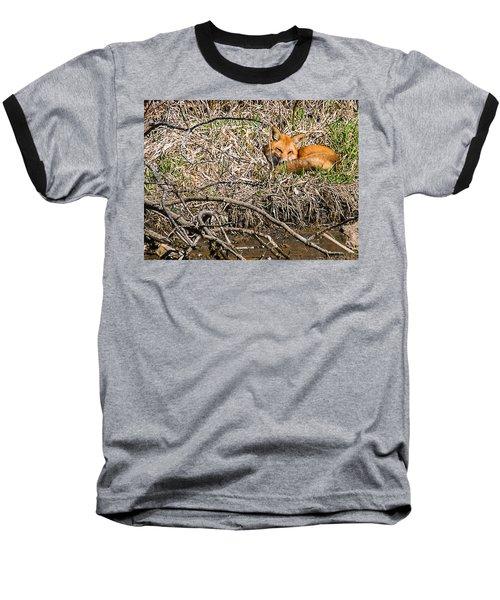 Fox Napping Baseball T-Shirt