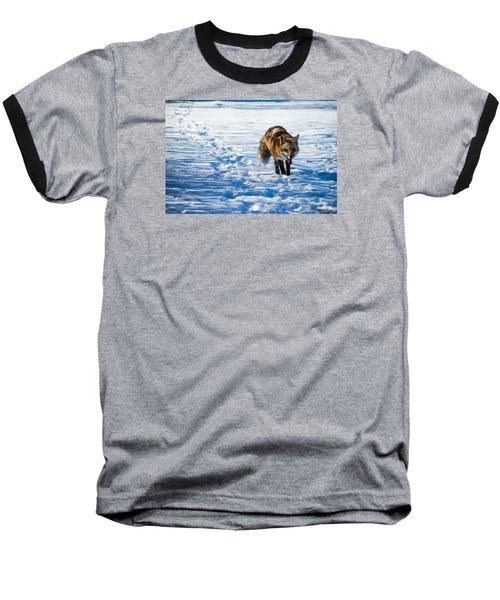 Fox Path Baseball T-Shirt