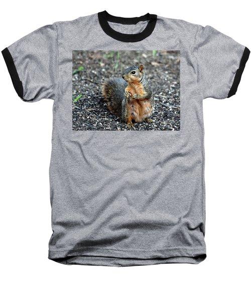 Fox Squirrel Breakfast Baseball T-Shirt by Sheila Brown