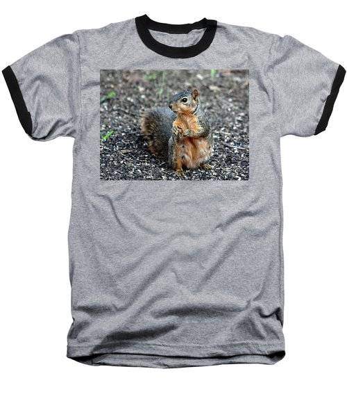 Fox Squirrel Breakfast Baseball T-Shirt