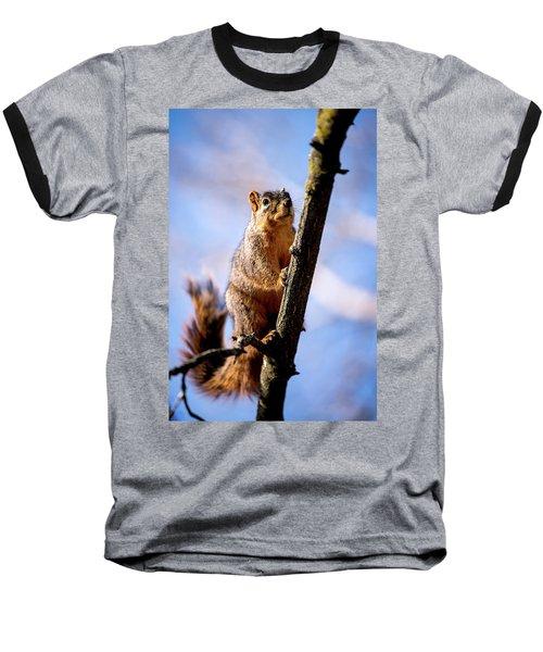 Fox Squirrel's Last Look Baseball T-Shirt