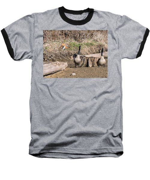 Baseball T-Shirt featuring the photograph Fox Watch by Edward Peterson