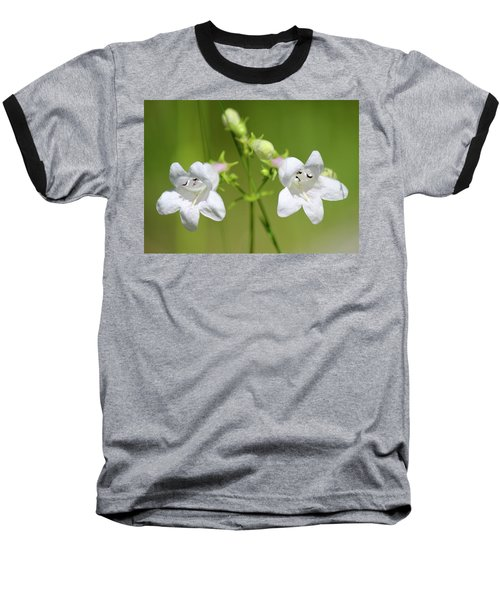 Foxglove Beardtongue Baseball T-Shirt